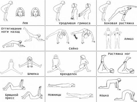 Стретчинг в фитнесе - это что такое, как делать упражнения