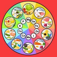 Значение макро- и микроэлементов в организме человека